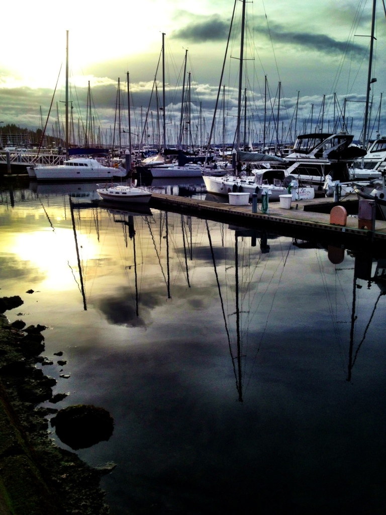 Golden Gardens Boats