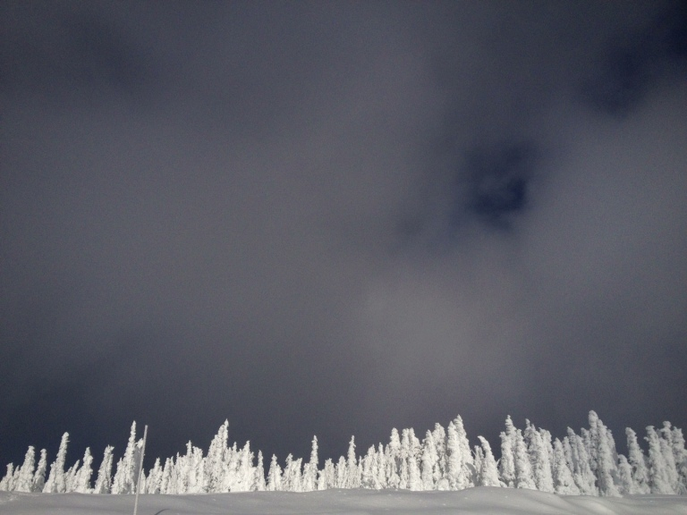 Hurricane_Ridge