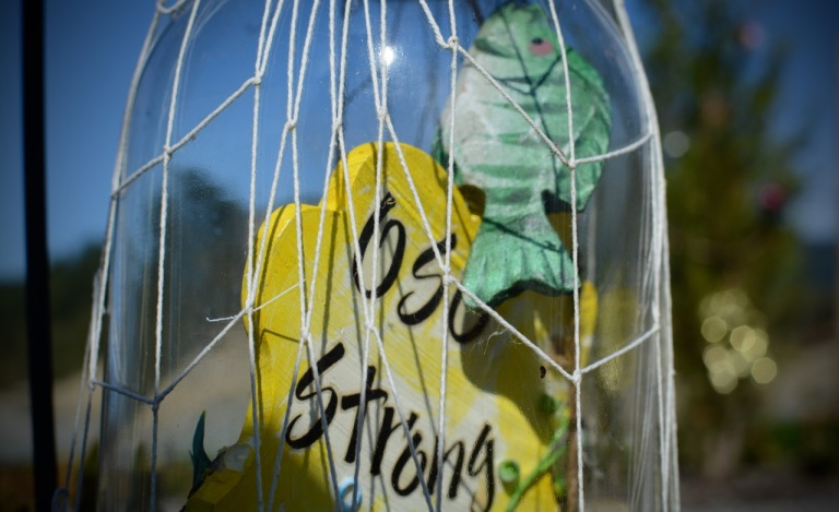Oso_Memorial_Strong