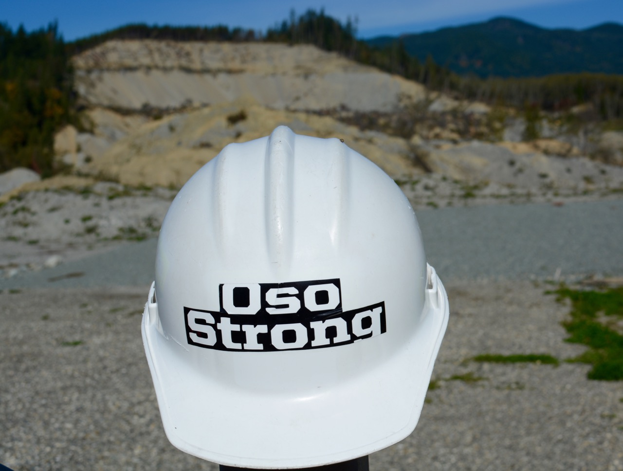 Oso_Strong