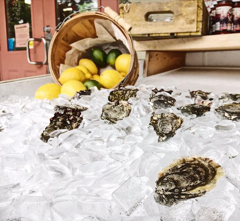 Oyster_Shells